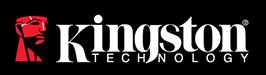 Kingston(キングストン)のロゴ