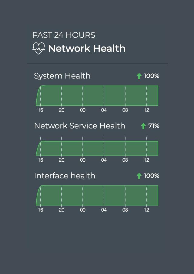 NetQ GUI screenshot network helth